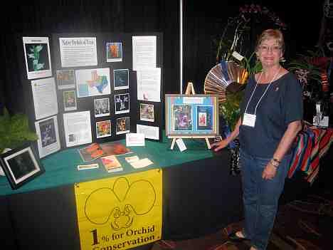 alamo os show gruene os display 2010