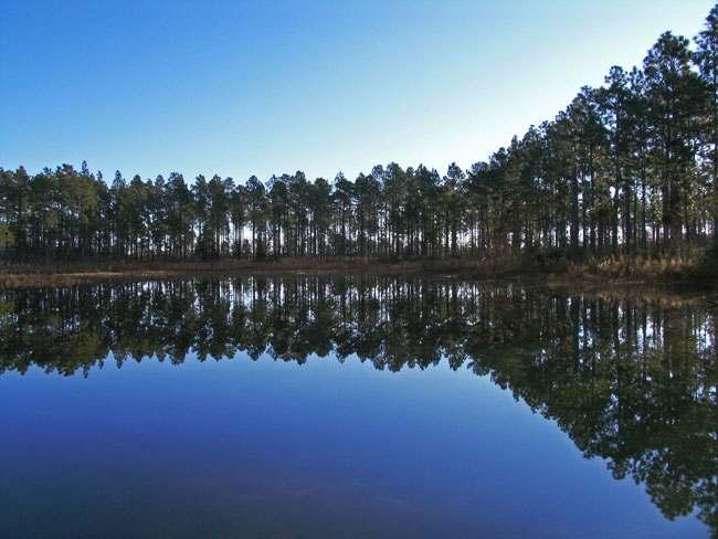 gs big pond