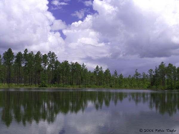 gs pond