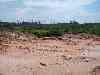 deforestation Gunung Leuser NP