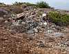 rubble dumped on orchid habitat