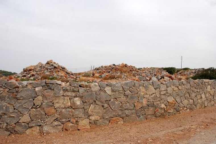 wall habitat