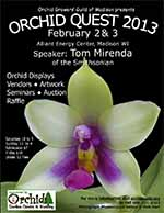 orchidquest2013150.jpg